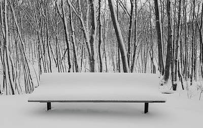 Photograph - Woods And Bench In Winter by Joe Miller