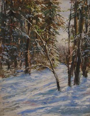 Woods And Snow At Two Below Print by Jack Skinner