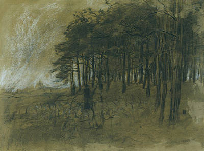 Realist Drawing - Woods by Anton Mauve