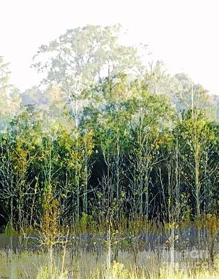Digital Art - Woods Edge Burden Baton Rouge by Lizi Beard-Ward