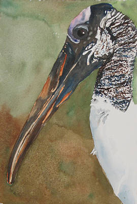 Painting - Woodstork Eye by Libby  Cagle