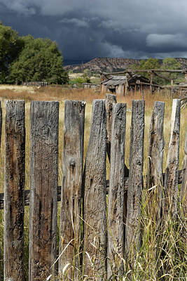 Photograph - Woodworm Art Picket Fence by Kathleen Bishop