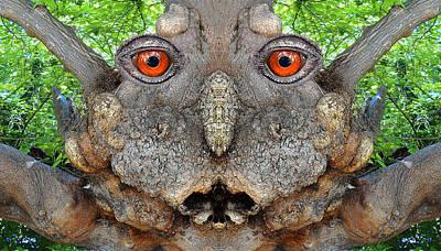 Pareidolia Wall Art - Digital Art - Woody 115 by Rick Mosher