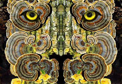 Fungi Digital Art - Woody 132 by Rick Mosher