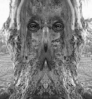 Digital Art - Woody 140bw by Rick Mosher