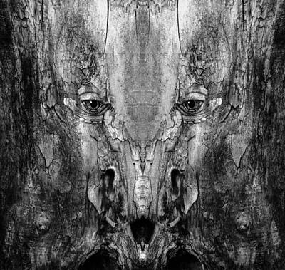 Digital Art - Woody 169 Bw by Rick Mosher