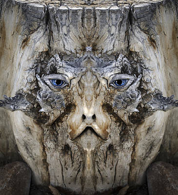 Digital Art - Woody 174 by Rick Mosher