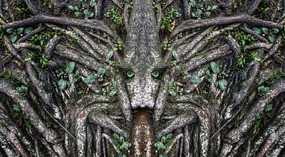 Pareidolia Wall Art - Digital Art - Woody 176 by Rick Mosher