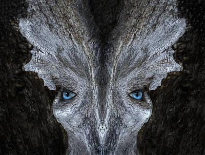 Pareidolia Wall Art - Digital Art - Woody 182 by Rick Mosher