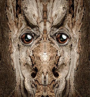 Pareidolia Wall Art - Digital Art - Woody 188 by Rick Mosher