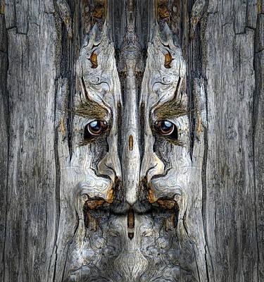 Pareidolia Wall Art - Digital Art - Woody 203 by Rick Mosher