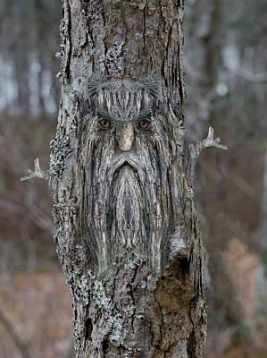 Digital Art - Woody 214 In The Wild by Rick Mosher