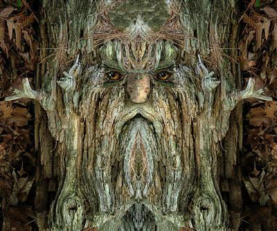 Pareidolia Wall Art - Digital Art - Woody 214 by Rick Mosher