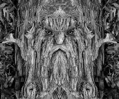 Digital Art - Woody 214bw by Rick Mosher