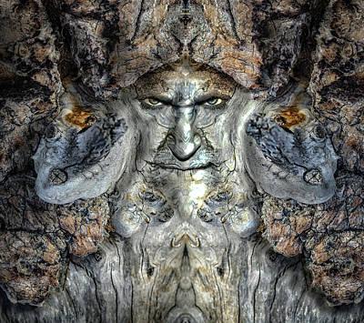 Pareidolia Wall Art - Digital Art - Woody 222 by Rick Mosher