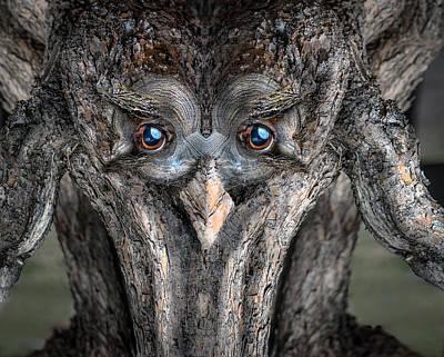 Pareidolia Wall Art - Digital Art - Woody 232 by Rick Mosher