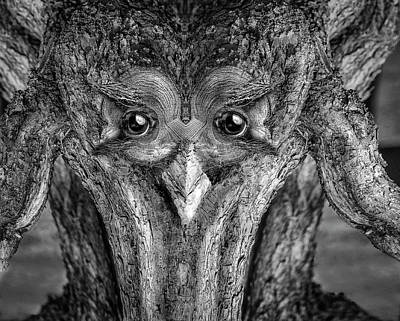 Digital Art - Woody 232bw by Rick Mosher
