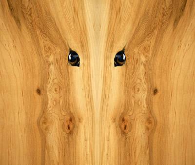 Wood Digital Art - Woody 71 by Rick Mosher