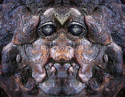 Pareidolia Wall Art - Digital Art - Woody 76 by Rick Mosher