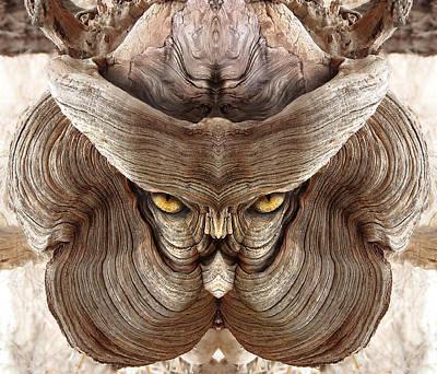 Pareidolia Wall Art - Digital Art - Woody 88 by Rick Mosher