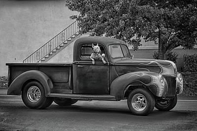 Photograph - Woof by Bill Dutting