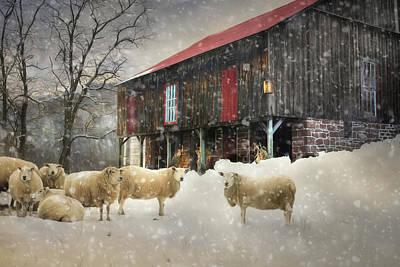 Wool Coats Art Print by Lori Deiter