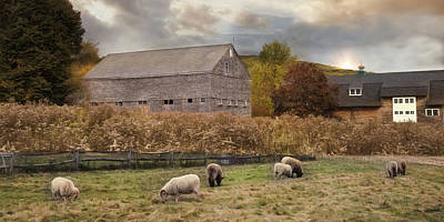 Photograph - Woolen Fields by Robin-Lee Vieira