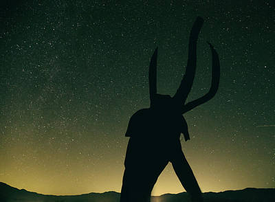 Photograph - Woolly Mammoth At Night by Kunal Mehra