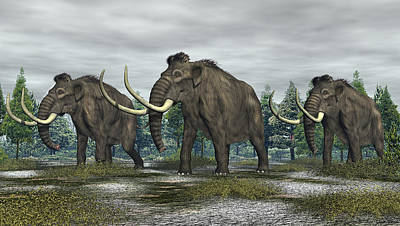 Digital Art - Woolly Mammoth by Walter Colvin
