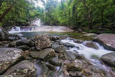 Photograph - Wooroononooran National Park by Sheila Mcdonald