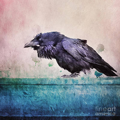 Words Of A Raven Art Print by Priska Wettstein