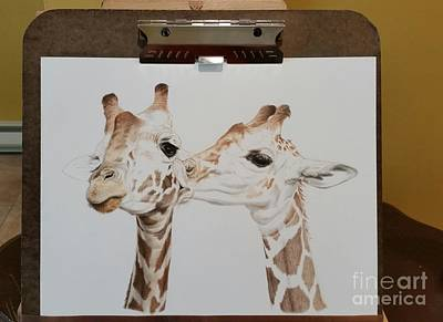 Giraffe Drawing - Work In Progress 2 by Sarah Batalka