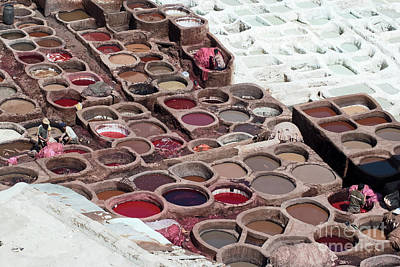 Morocco Photograph - Workers Processing Hides In Colorful Tanning Pools At A Traditional Leather Tannery, Fes , Morocco,  by Dani Prints and Images