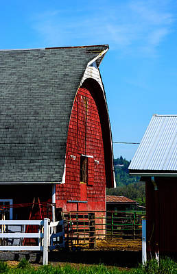 Photograph - Working Barn by Tikvah's Hope