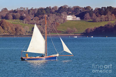 Purely Purple - Working Boat at Trelissick Cornwall by Terri Waters