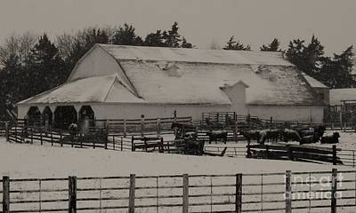 Photograph - Working Cattle Barn by J L Zarek