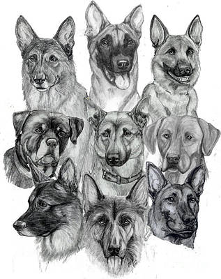 Drawing - Working Dogs Of Florida by Lorah Buchanan