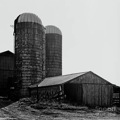 Photograph - Working Farm by Patrick M Lynch