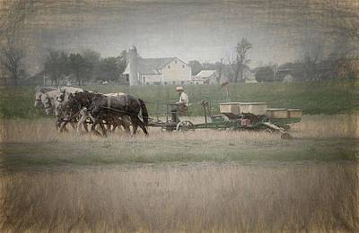 Photograph - Working The Field by Dyle Warren