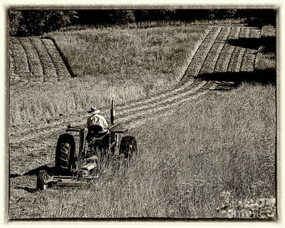 Photograph - Working The Field by Joann Long