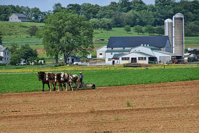 Amish Community Photograph - Working The Fields by Tricia Marchlik