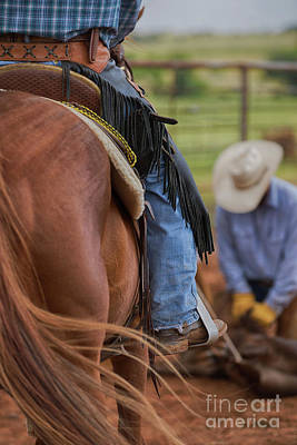 Working Cowboy Photograph - Working The Rope by Terri Cage