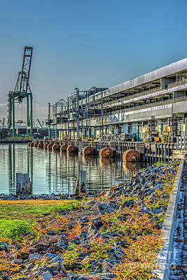 Photograph - World Cruise Center San Pedro Waterfront by David Zanzinger