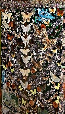 Photograph - World Of Butterflies by Colette Merrill