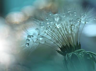 Photograph - World Of The Drops... by Juliana Nan