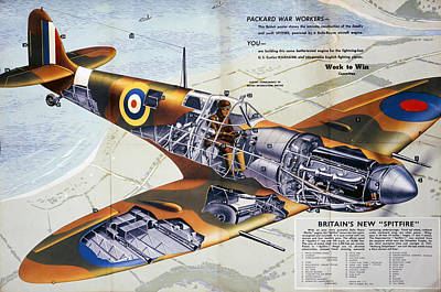 Digital Art - World War 2 - Spitfire by Ericamaxine Price