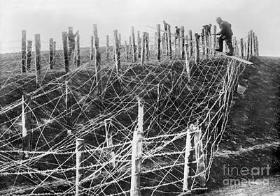 Photograph - World War I Barbed Wire by Granger