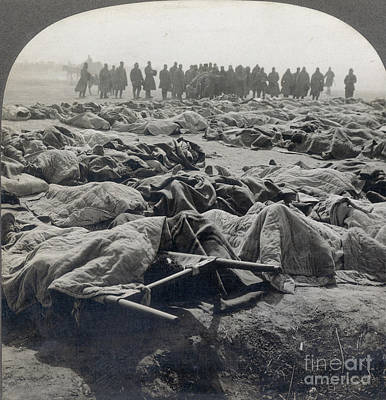 Photograph - World War I: Russian Dead by Granger