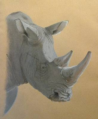 White Rhino Painting - World Weary Or World Wary by Fiona Rowley