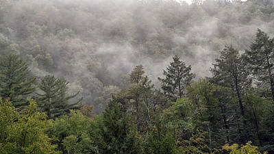 Photograph - Worlds End State Park Fog by Frank Morales Jr